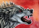 Crimson growl - ACEO for SaQe by wolf-minori