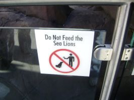 Don't feed the seals burgers by Magoo-Tora
