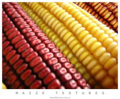 Maize textures by Designer by Macfree