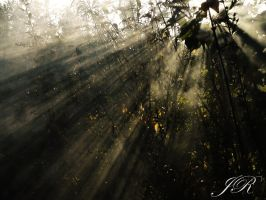 shine on your soul by J-and-R