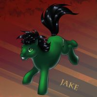 Jake OC pony by DarkDragon774