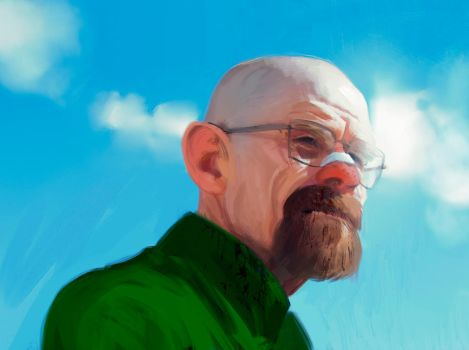 Walter White by DanarArt