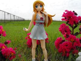 Kirino in july. by HolosLove