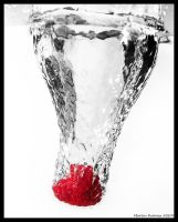 Fluid Dynamics - Rasberry by hquer