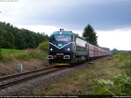 SD 753-603+3OtherLocos 69060 Kladno 13-09-13 by Comboio-Bolt