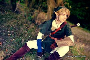 Link Cosplay #3 by Laovaan