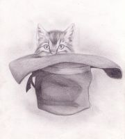 Cat in a hat by clayvsc