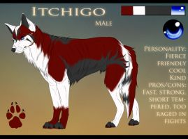 Itchigo - Reference Sheet by Kasamm
