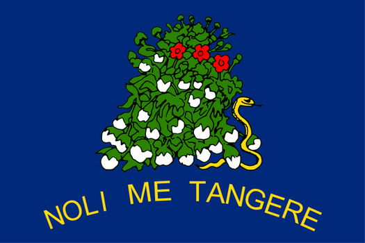 Reverse Alabama State Sucessionist flag (1861) by OddGarfield