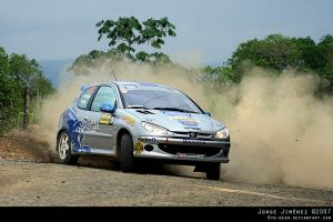 Rally - Peugeot 206 RC Slide by 6th-gear