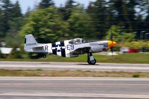 Fly Day - P-51B Mustang by CopperbeltJack