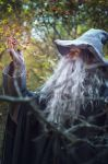 The Lord of the Rings :Gandalf by Okani1995