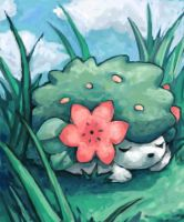 shaymin by SailorClef