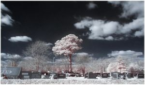 Graveyard Infrared by Enkased