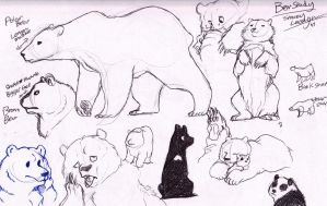 BEARS, BEARS, BEARS! by ShadeySix
