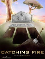 Catching Fire Poster by GavinMichelli
