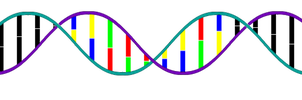 DNA stock image by UniversalKinase