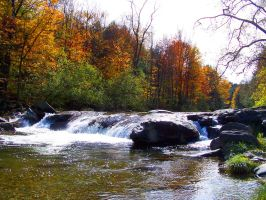 Brewster River in Fall by jerrinator