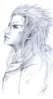 Belated 1k Gift: Saix by Vyrilien
