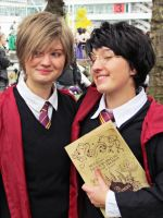 Harry Potter - Marauders by TheBlackPancake
