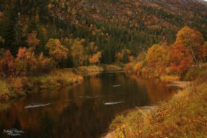 Autumn River by Kaeley