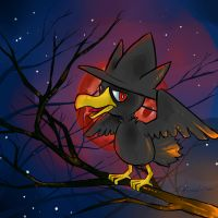 Murkrow's Night by Pluffers