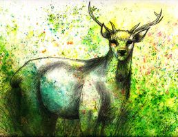Forest Deer by IzzyIllustration