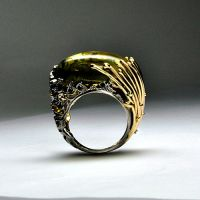 Amber ring 2 by GatoJewel-DerKater