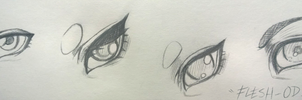 My eye styles by Flesh-Odium