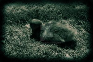 sleeping baby... by ToxicChick