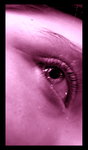 One Pink Eye by DayDreamsPhotography