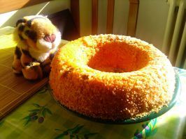 Giant donut-shape rice :3 by Zephir-Zophar