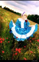 Hetalia - Dance In The Poppy Field by aco-rea
