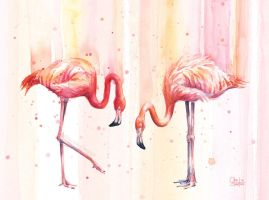 Two Flamingos Watercolor by Olechka01