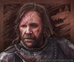 Sandor Clegane The Hound by CrystalSully