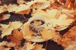 Autumn Leaf Tea II by VelvetRedBullet