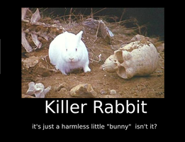 Killer rabbit Motivational by nicksnack