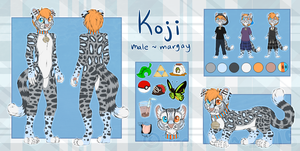 Koji Ref Winter 2015 by Tremlin