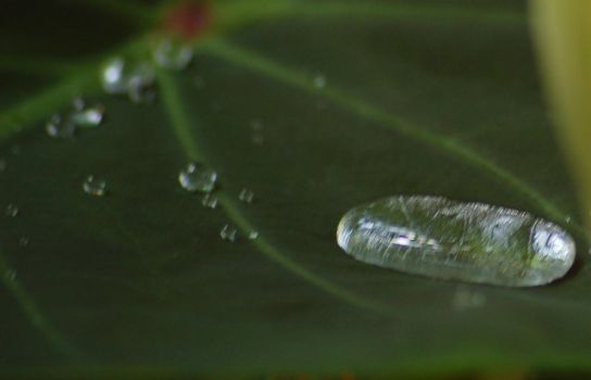 Droplet by inmediasres