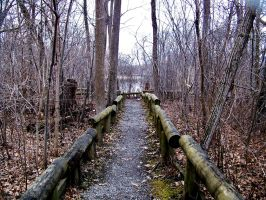 Path Stock 1 by philippeL-stock
