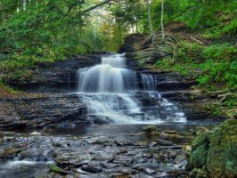 Ricketts Glen State Park 12 by Dracoart-Stock