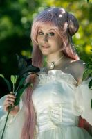 Euphemia - The black lily by Thesan13