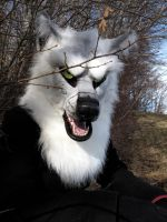 Pale Gray Wolf (for sale !) by Faol-bigbadwolf