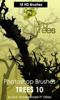 Dry Trees Photoshop Brushes by shadedancer619