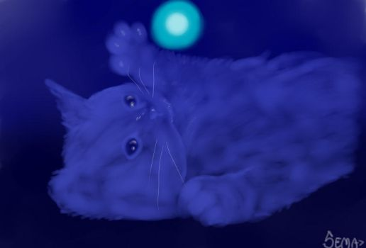 The blue cat and his light by LoboSema