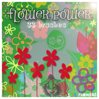 Flower Power brushes by vnnexpress