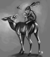 How jackalopes are made by thornwolf