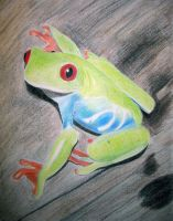 Red Eyed Tree Frog by wanderingaimlessly