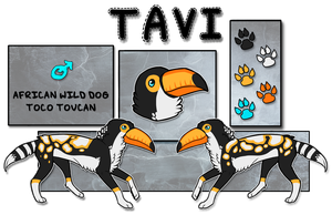 [AUCTION]Tavi the African Wild Toucandog! [CLOSED] by Deestracted