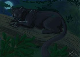 Spitpaint 001: Panther in the Jungle by selkie-gal